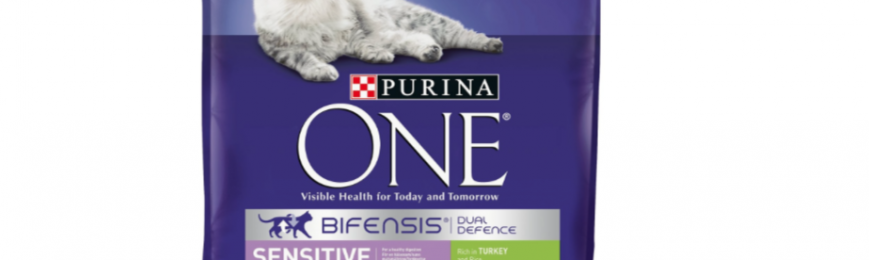 Purina One Cat Food Sample
