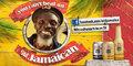 Jamaica Ginger Beer Samples