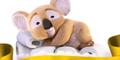 6,552 x Heat 'n' Hug Cushelle Koala Toys