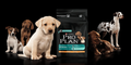 £5.00 off Purina Pro-Plan Puppy Food