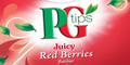 PG Tips Red Berry & Green Tea Sample