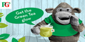 PG Tips Free Green Tea sample