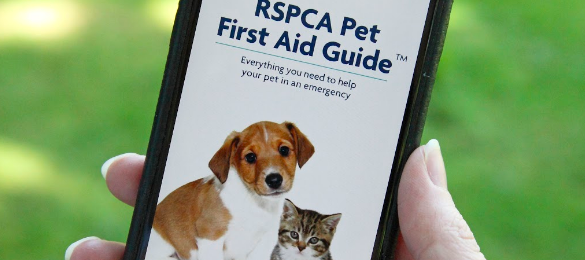 FREE RSPCA Pet First Aid Guide