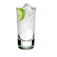 Free Miniature Bottle of Gin