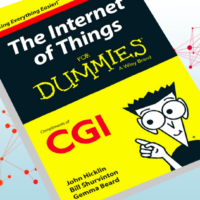 Free The Internet For Dummies Book
