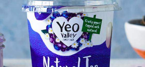 Free Yeo Valley Natural Top Yogurt