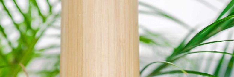 Free Bamboo Water Bottle